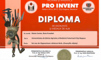 diplome_Page_02.png