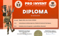 diplome_Page_06.png