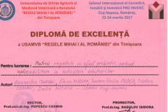 diplome_Page_29