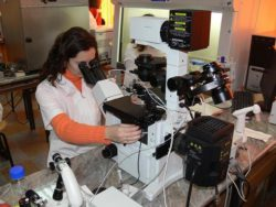 Facultatea de Zootehnie şi Biotehnologii